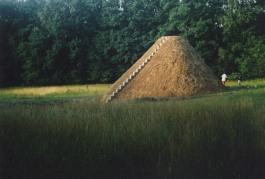 Peter Pilz - Bombentrichter, 2001