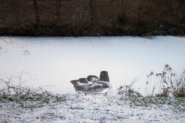 kogler_winterhandschuh